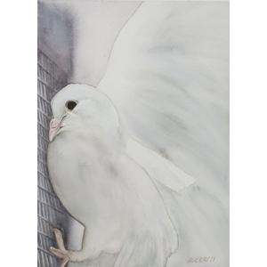 Print 18: Flight of Freedom 1