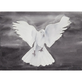 Print 20: Flight of Freedom 3